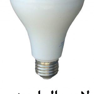 لامپ 19 وات LED % لامپ های LED شرکت مگانور